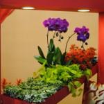Flower Arranging, Ikebana-Style