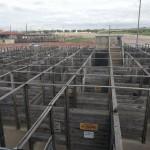 Cattlepen Maze