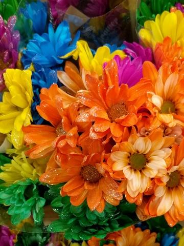 glitter daisies